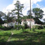 Park Olexandria: Palace ruins